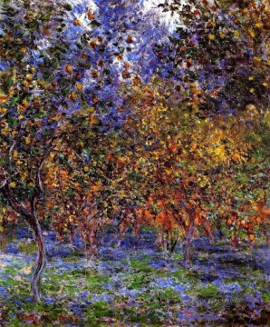 Claude Monet Painting - Under the Lemon Trees Claude Monet